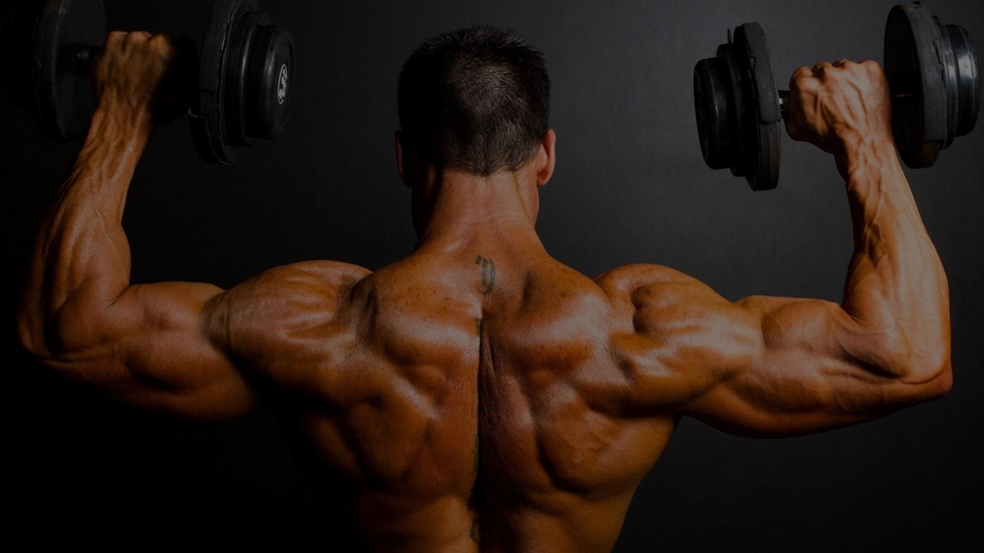 Pinhais weight lifting